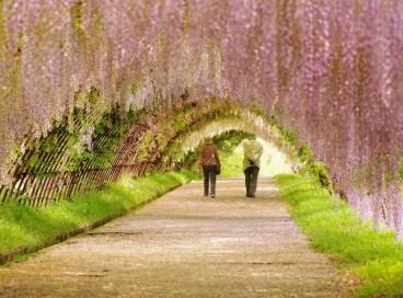 Подборка чудеснейших мест на Земле для прогулок