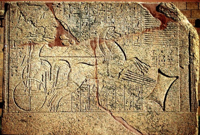Царь Аменхотеп II