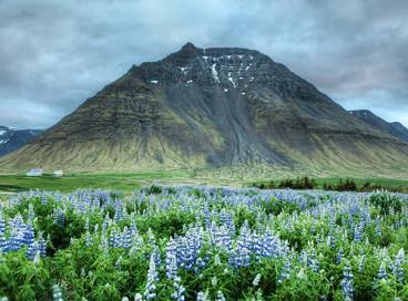 Невероятные факты об Исландии