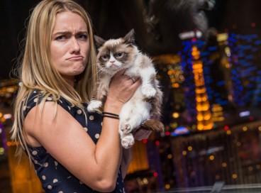 10 секретов, приведших угрюмого кота к баснословному богатству