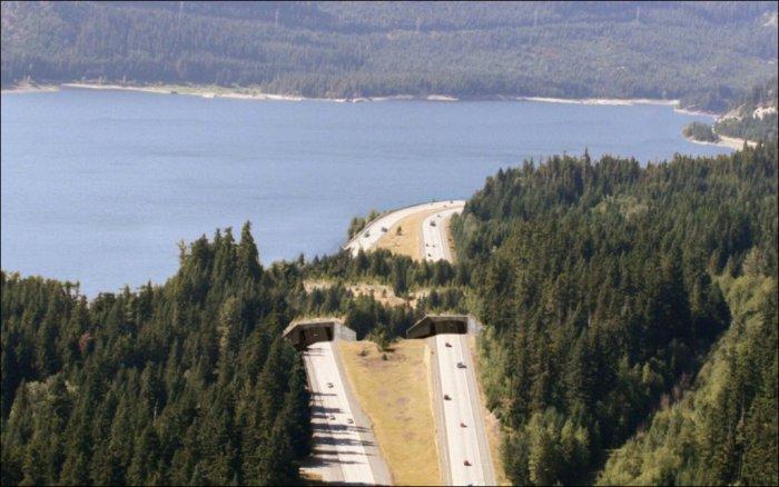 5. Озеро Кичелус, Вашингтон, США