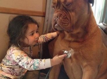 Дети и животные,смотрите сколько счастья!
